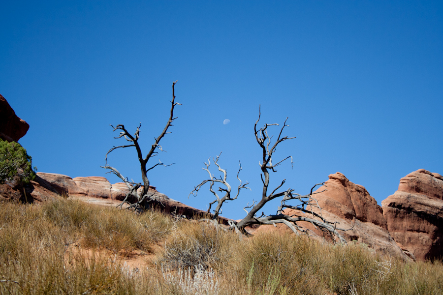 Arches National Park photography