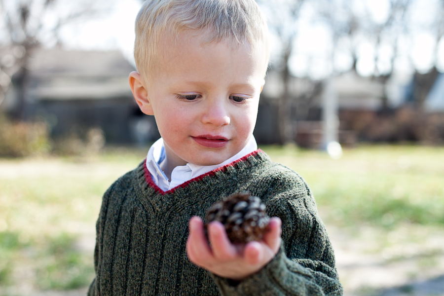 boy and pine cone