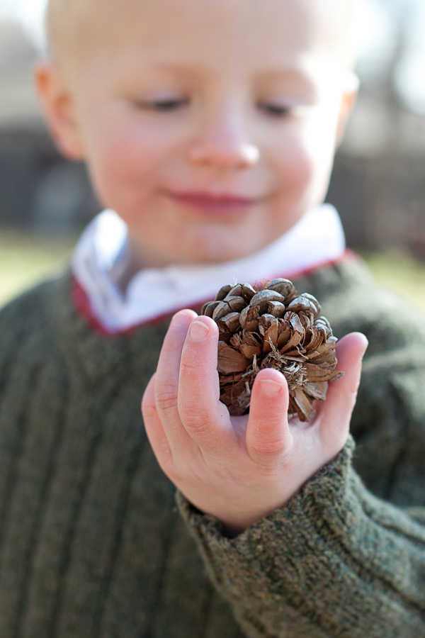 boy and pinecone